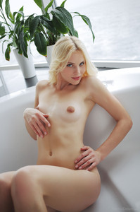 http://img108.imagetwist.com/th/08303/icdrwl3xq23p.jpg